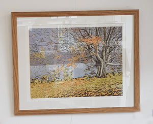 Framed Limited Edition Lino Print By Alexandra Buckle S180AB25
