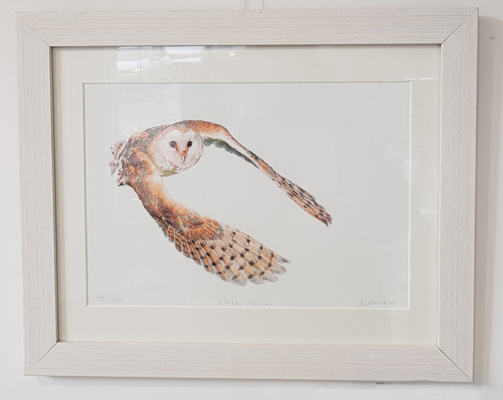 Framed Limited Edition Print By Jessica Lennox S74JL26