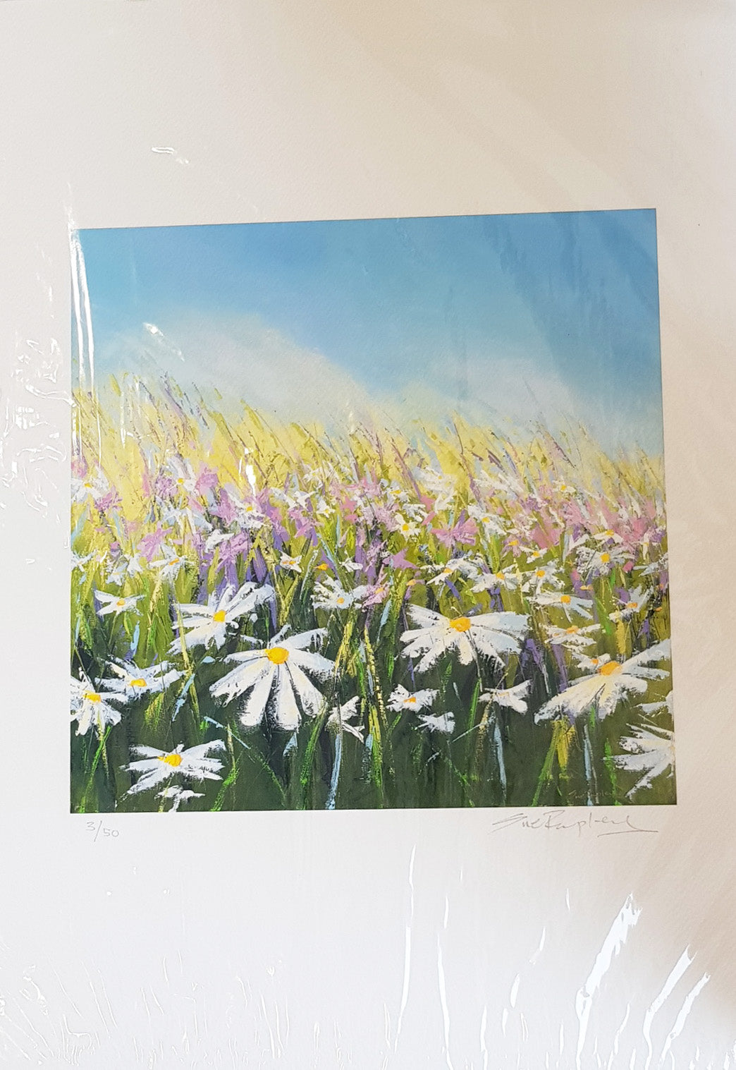 Limited Edition Print By Sue Rapley S158SR9