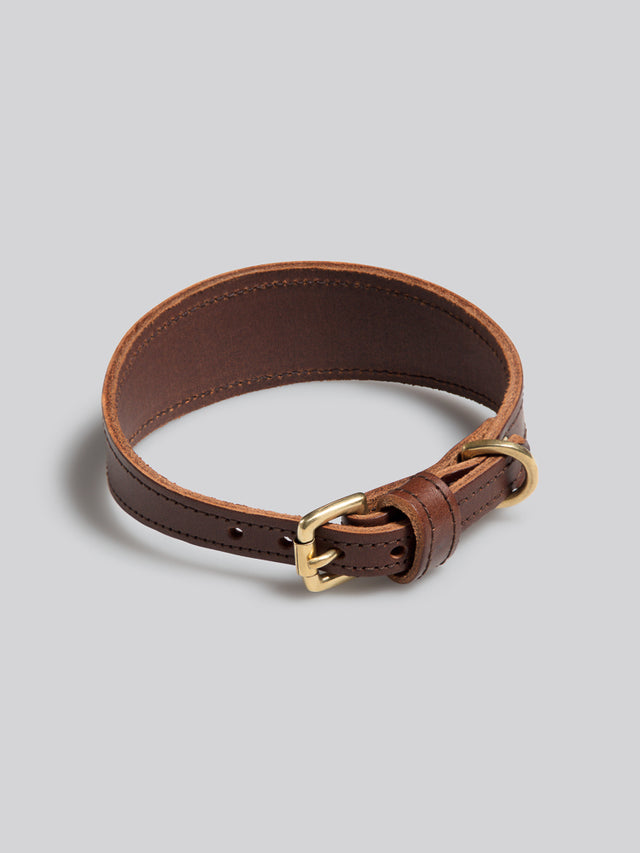 Sighthound collar - Whippet