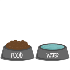 Bowls / Water Feeder