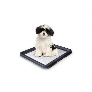 67150 NOBBY Doggy Trainer Including 1 Pad S - 48 x 41 x 3,5 cm - PetsOffice