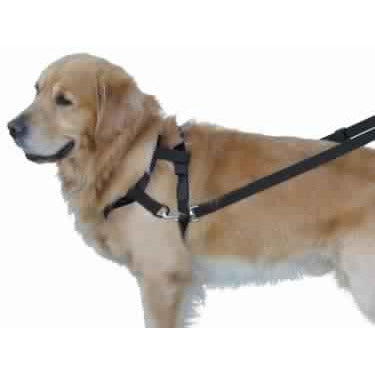 79272-05 NOBBY Top Walk - PetsOffice