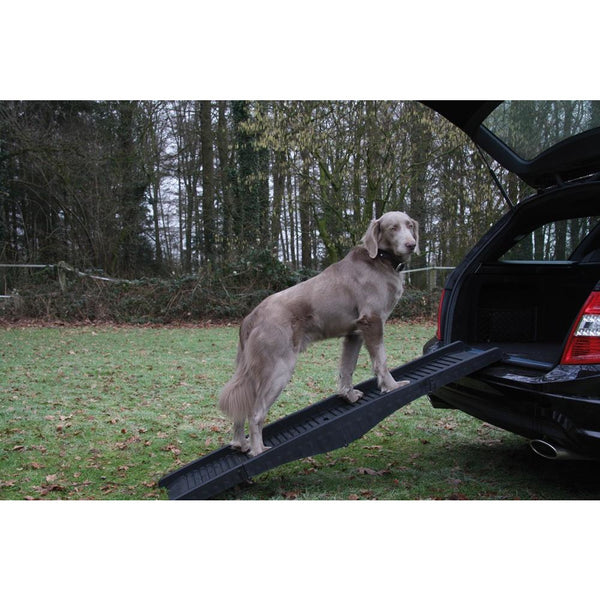 76325 NOBBY Dog ramp l x w: 40 x 1,52 cm - PetsOffice