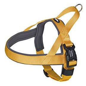 "80531-04 NOBBY NORWEGIAN Harness ""Classic Preno"" orange/grey L: 38-50 cm + 36 cm; W: 20/25 mm - PetsOffice"