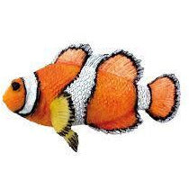"28457 NOBBY Fantasy Decor ""CLOWN FISH"" L10,5 x H,5 cm - PetsOffice"