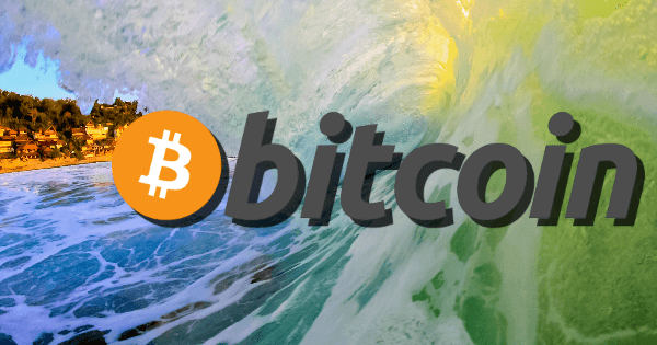 Buy Paddles with Bitcoins - Hornet Watersports now accepts Bitcoins