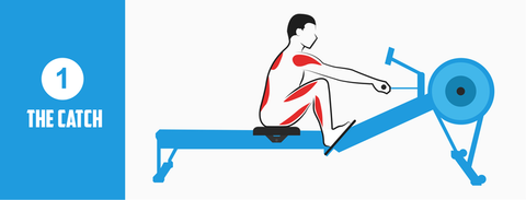 Rowing Machine Position The Catch