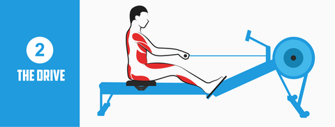 Rowing Machine Position The Drive