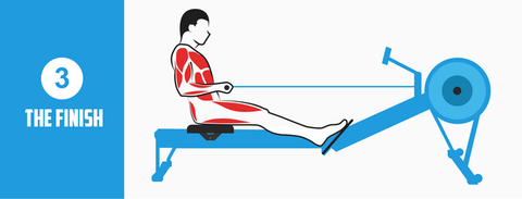 Rowing Machine Position The Finish