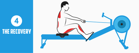 Rowing Machine Position The Recovery