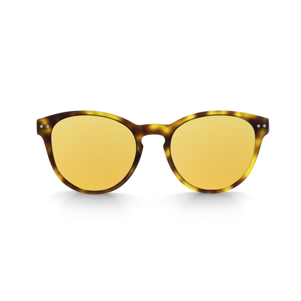 Hill Tortoise Acetate