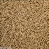 High Protein Growth Pellet Food 500g-10kg - Koi Food - Koidivision - 1