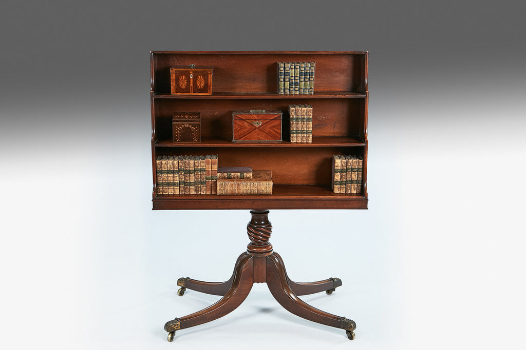 Irish Regency Double Sided Bookshelves