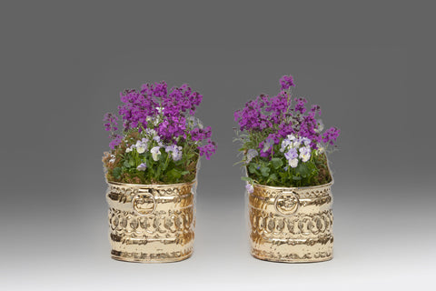 A Pair of Georgian Brass Plant Holders - MS133