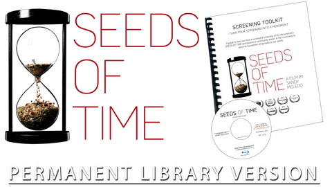 04 - Permanent Library Version