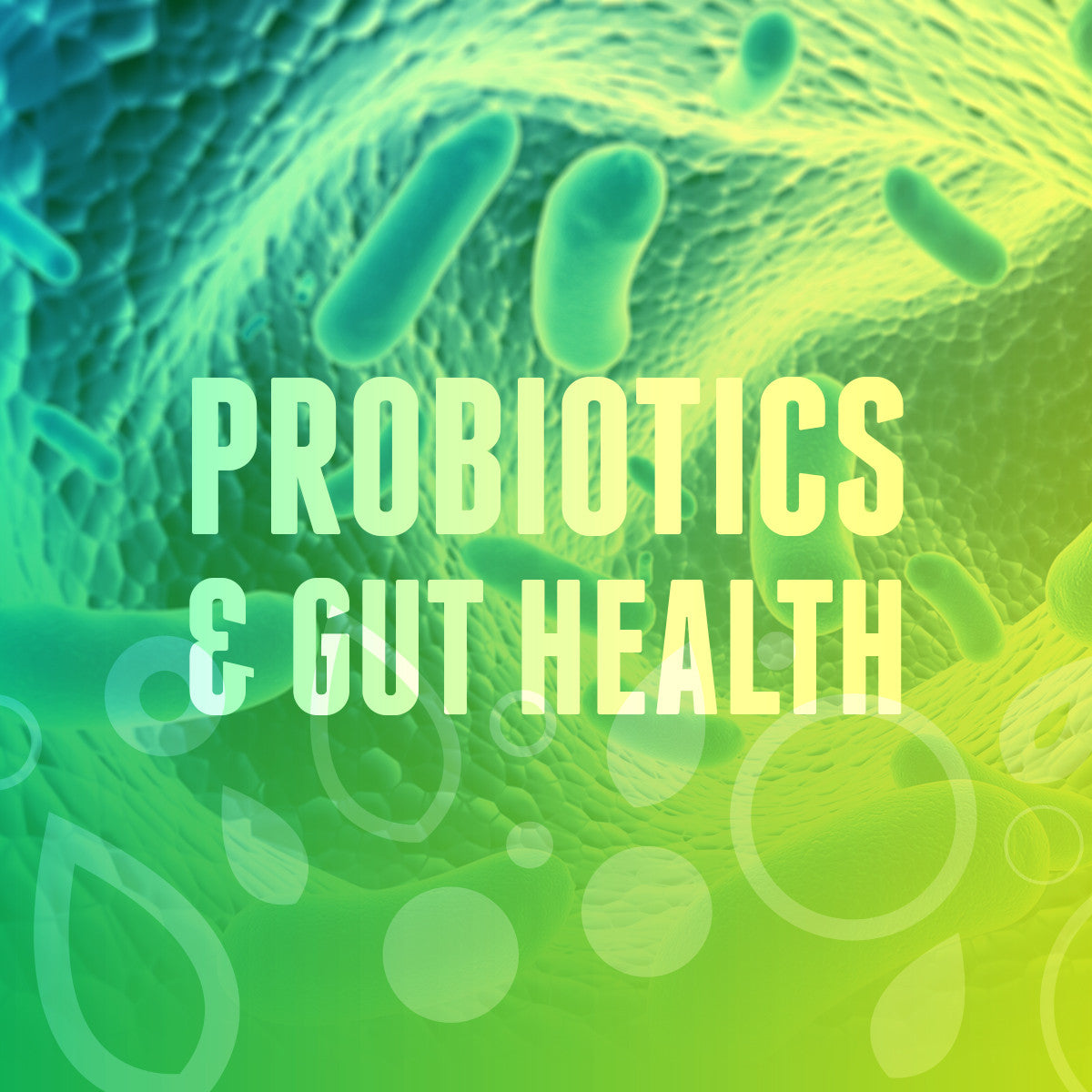 Probiotics & Gut Health