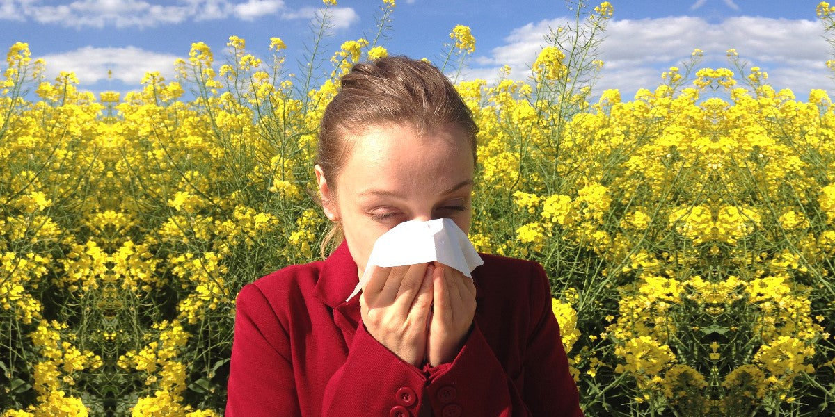 woman with allergies sneezing with in a field of flowers