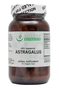 Astragalus Root - 90 Capsules - Front