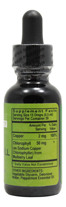 Chlorophyll - 1 fl oz - Supplement Facts