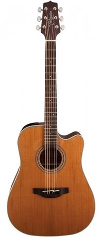 Takamine G20 Series GD20CE-NS Dreadnaught Acoustic-Electric Guitar, Natural