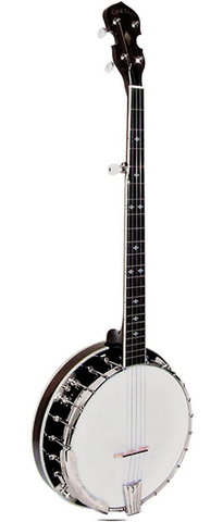 Gold Tone BG-250F 5-String Resonator Banjo