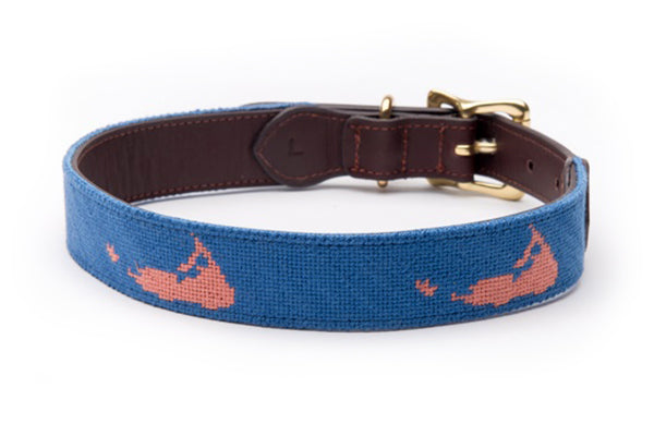 Nantucket on Blue Dog Collar