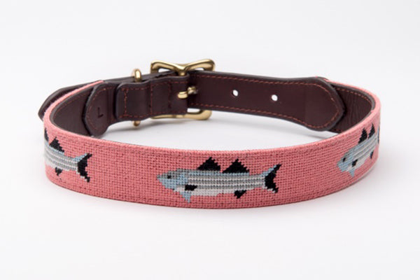 Striped Bass Dog Collar