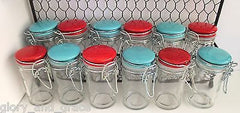 Glory & Grace Wall or Counter Kitchen Wire Spice Rack w 12 Aqua and Red Jars