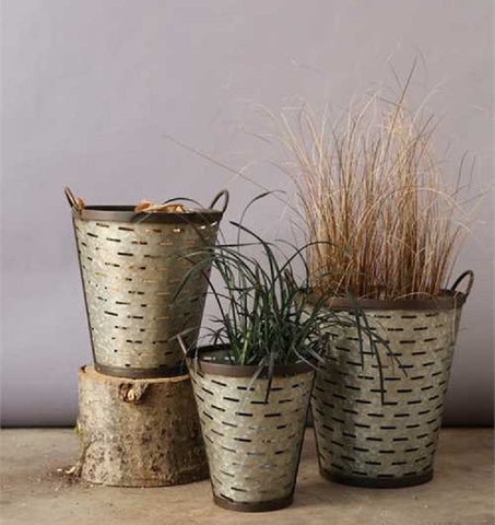 Galvanized and Iron Banded Olive Bucket