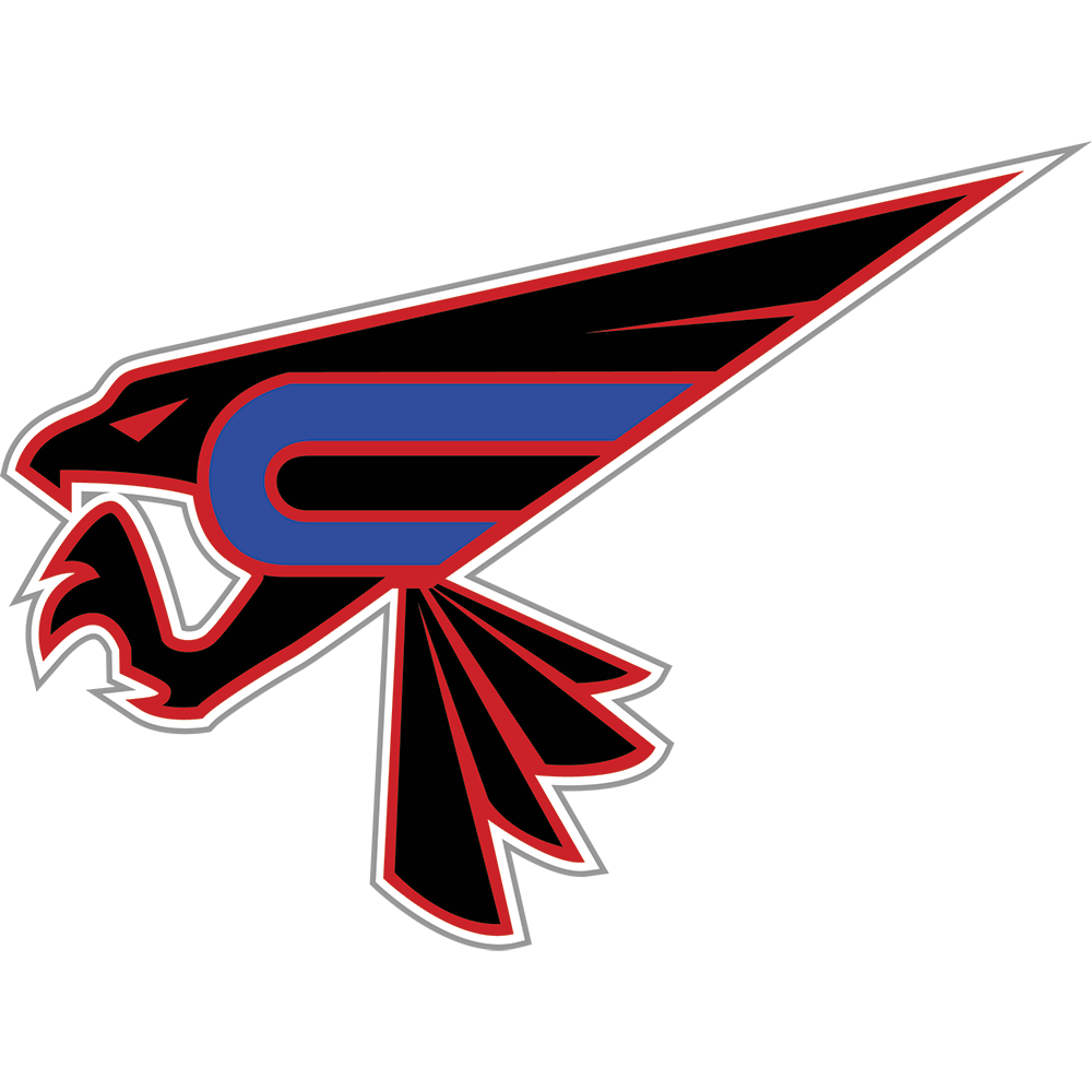 Chesterfield Falcons