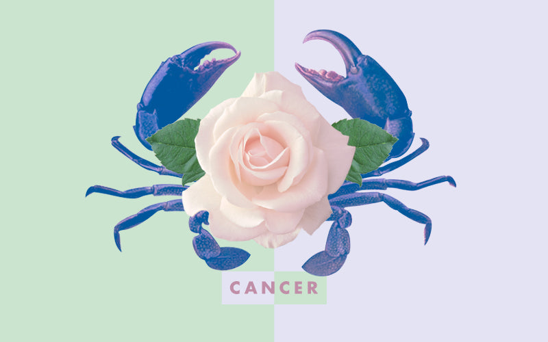 Cancer by Katie Maasik