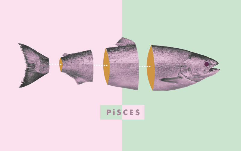 Pisces by Katie Maasik