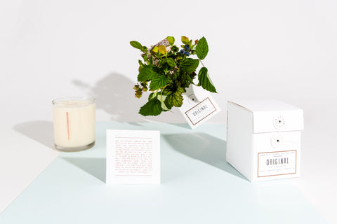 WOODLOT candles