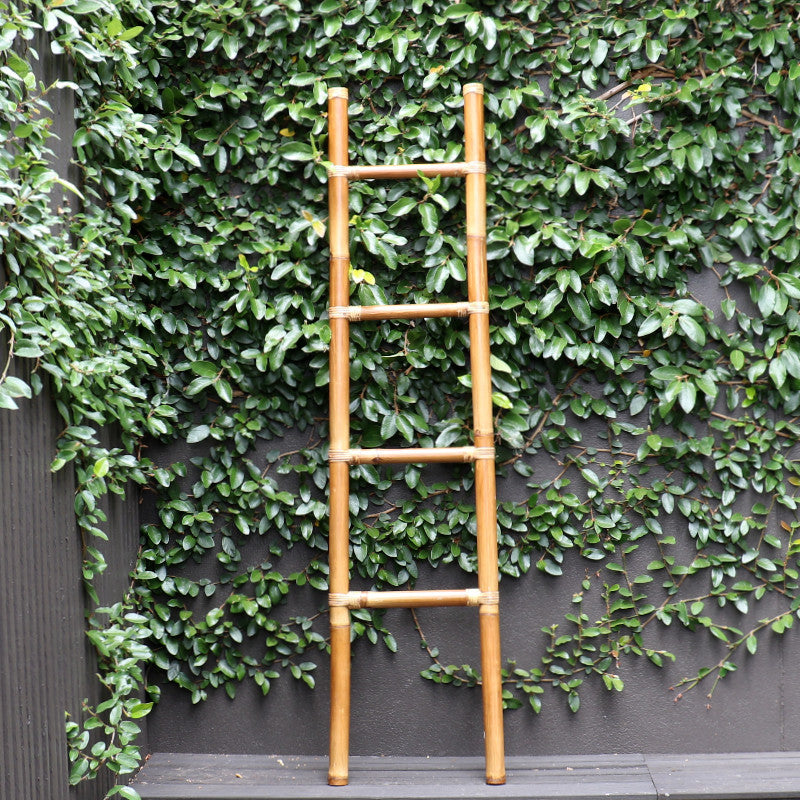 Ladder, bamboo, brown, 170cm