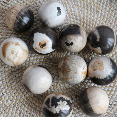 Balls, petrified wood