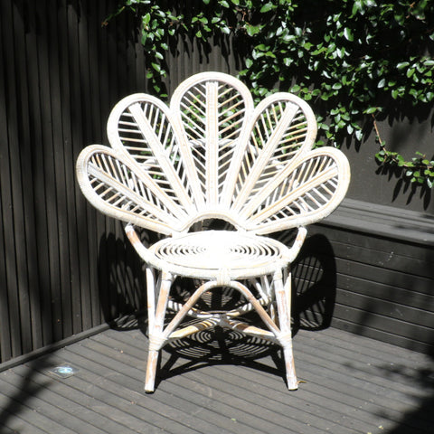 Chair, rattan, flower, lotus