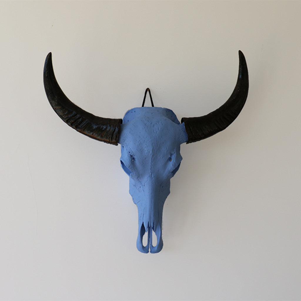 Water Buffalo skull painted bone