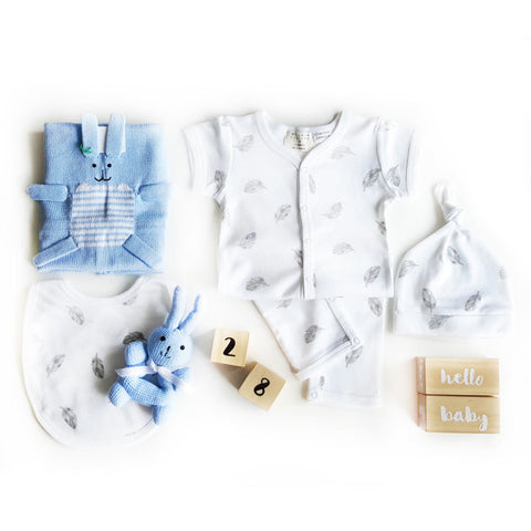 BLUE BUNNY BUNDLE SET