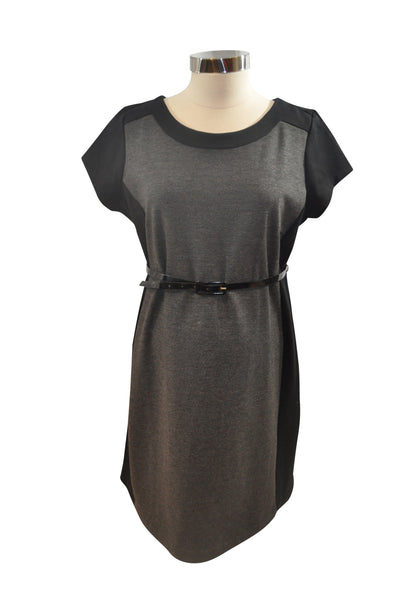 Gray & Black Career Dress by Motherhood