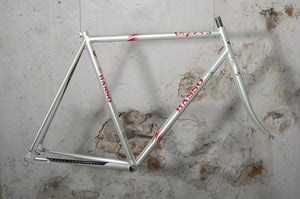 Frame for Eroica needed? Basso Viper is the right one!