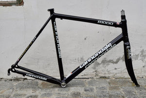 Impeccable new Optimo R1000 frameset