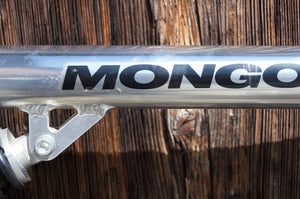Mongoose with AMP-Fork
