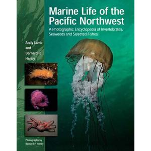 Marine Life of Pacific Northwest by Andy Lamb and Bernard Hanby