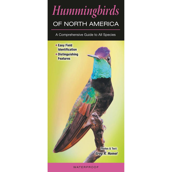 Hummingbirds of North America Laminated Pamphlet, 12pp, 4.5 x 10