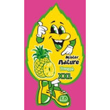 Mr Nature Fruit and Fresh XXL Hanging Car Air Freshener - Parma Automotive
