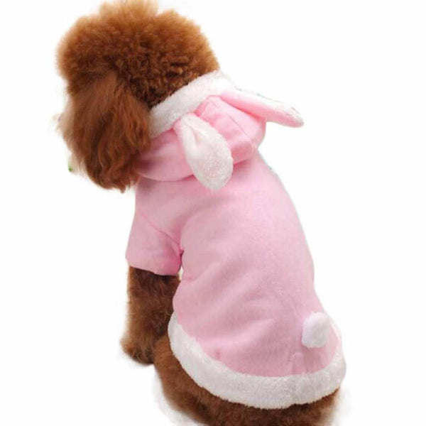 Rabbit Outfit for Your Little Dog