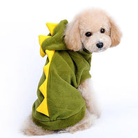 Green Dragon Small Dog Outfir for Winter Warmth