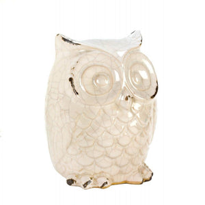 Wide-eyed Glazed White Owl Statue - The House of Awareness