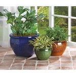Jewel-tone Flower Pot Trio - The House of Awareness